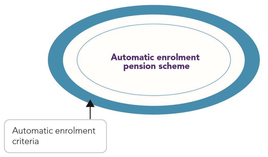 AE Detailed guide 4-3: Automatic enrolment criteria