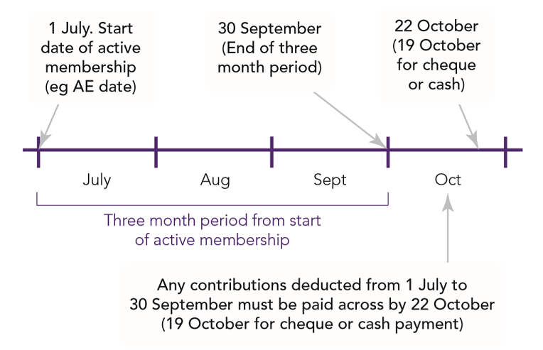 Automatic enrolment Detailed guidance 5: An explanation of the automatic enrolment process Fig 5